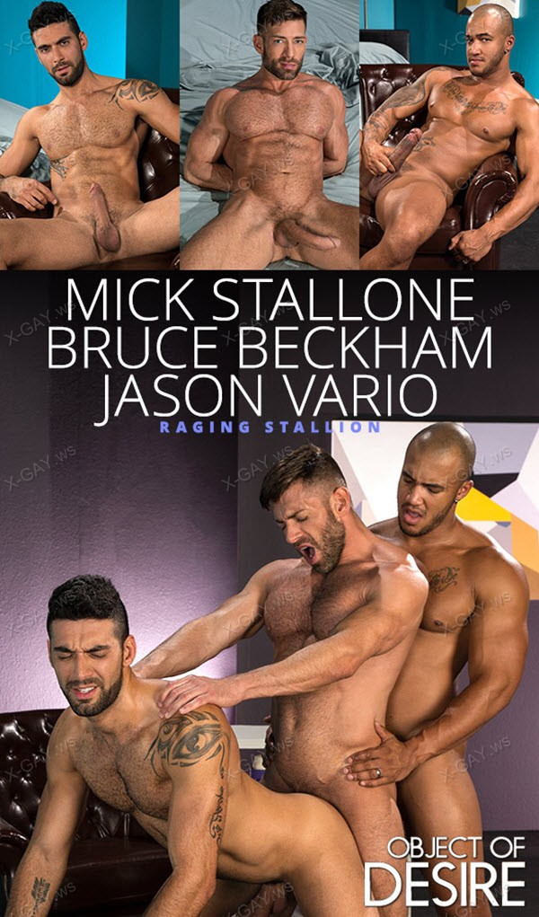RagingStallion: Object of Desire (Bruce Beckham, Jason Vario, Mick Stallone)