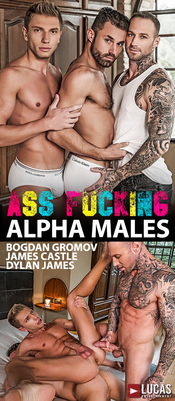 LucasEntertainment: James Castle and Dylan James Own Bogdan Gromov's Ass (Bareback)