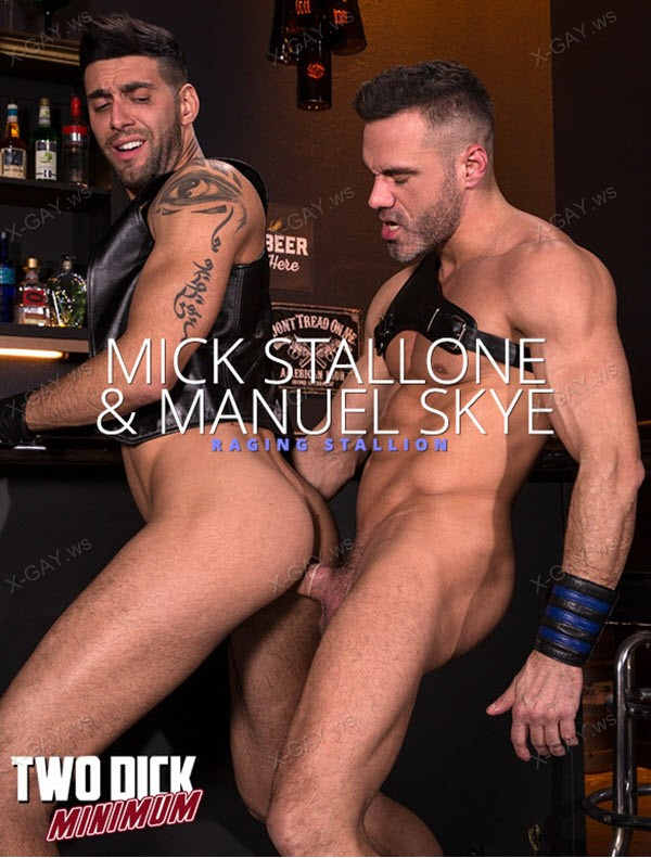 RagingStallion: Two Dick Minimum (Manuel Skye, Mick Stallone) (Flip Fuck)
